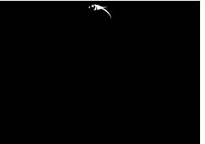 Logo Zakladu Pogrzebowego J.Nowicki